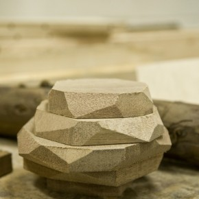 Cutting and Constructing with Wood, Spring Course 2016