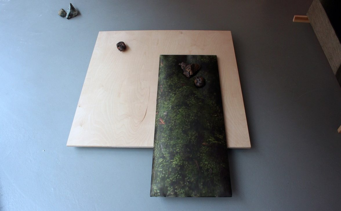 Detail of rocks displayed on a rectangular stretched image of scanned moss printed on fabric, on a square sheet of birch plywood