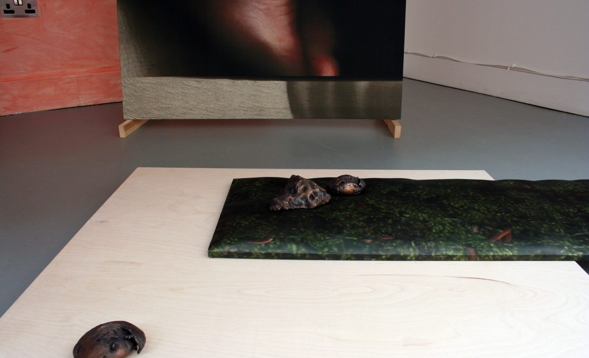 Detail of bronze casted rocks displayed on top of a stretched image of scanned moss printed on fabric, on a birch plywood sheet with a washed out terracotta coloured wall and detail of a scanned foot on fabric in the background
