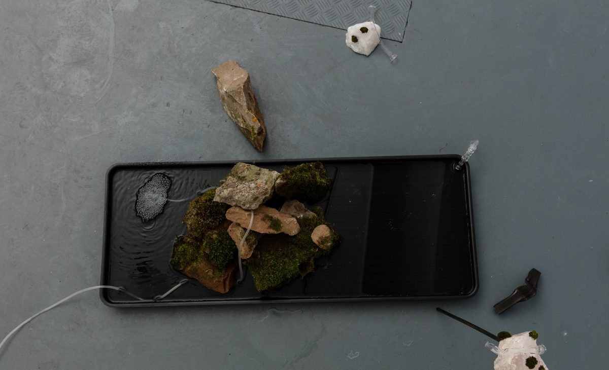 Birds eye view of a shallow tray of water with a stack of rocks and moss. A frosted pipe weaves through the water-rocks-moss and there is a cluster of bubbles coming from the end of pipe submerged in the water. There are more rocks and scientific glass apparatus scattered around the tray