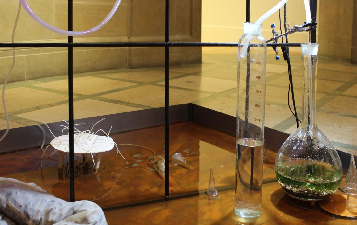 Floor level view of scientific glass apparatus, consisting of tall containers and beakers filled with varying levels of water. There are frosted pipes connecting the apparatus and they sit in a shallow water with rusted tones, set against a metal rod grid